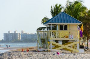 Miami Beach Flip